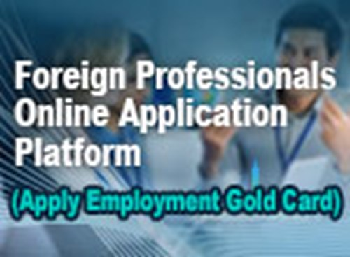 Foreign Professionals Online Application Platform